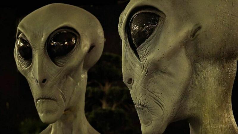 mimozeman.jpg